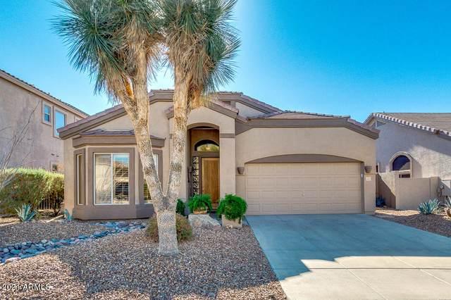 3055 N Red Mountain #156, Mesa, AZ 85207 (MLS #6180243) :: The Helping Hands Team