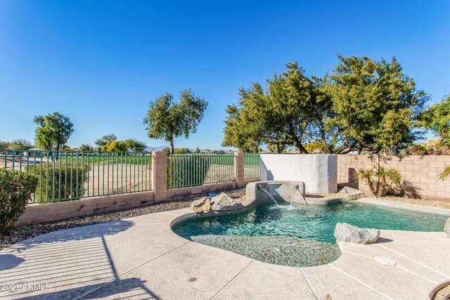 13189 W Palm Lane, Goodyear, AZ 85395 (MLS #6180480) :: CANAM Realty Group