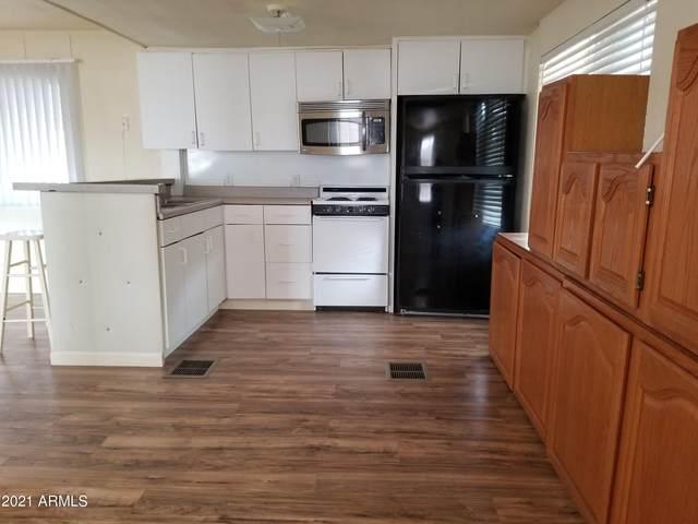 272 E Spur Trail, Roosevelt, AZ 85545 (MLS #6180629) :: Maison DeBlanc Real Estate