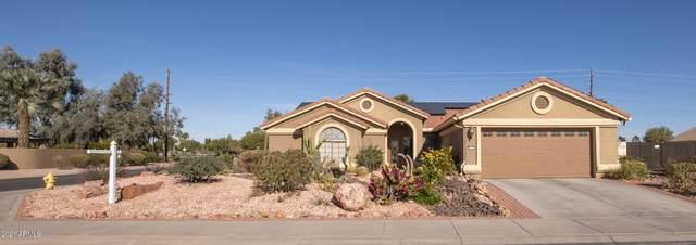 16134 W Edgemont Avenue, Goodyear, AZ 85395 (MLS #6180730) :: Yost Realty Group at RE/MAX Casa Grande