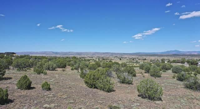 6350 N Mangas (Lot Split B) Drive, Chino Valley, AZ 86334 (MLS #6180733) :: Yost Realty Group at RE/MAX Casa Grande