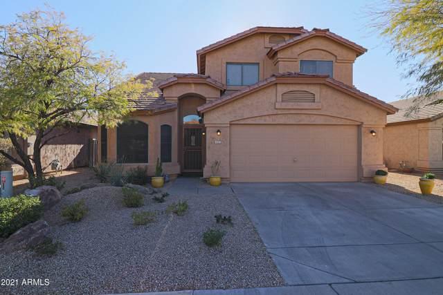 4421 E Lone Cactus Drive, Phoenix, AZ 85050 (MLS #6180795) :: The Newman Team