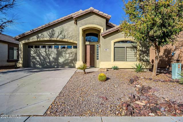 866 E Dragon Fly Road, San Tan Valley, AZ 85143 (MLS #6180825) :: The Garcia Group