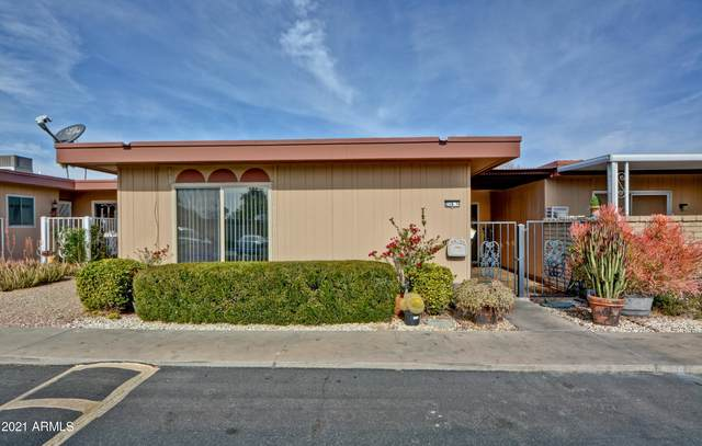 13216 N 98TH Avenue N, Sun City, AZ 85351 (MLS #6180836) :: Long Realty West Valley