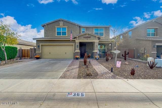 365 E Lazio Road, San Tan Valley, AZ 85140 (MLS #6180916) :: Power Realty Group Model Home Center
