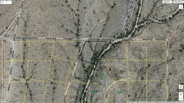 4813 N 313TH Avenue, Buckeye, AZ 85396 (MLS #6180928) :: The W Group