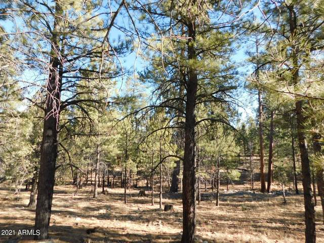 2071 Pine Canyon Drive, Happy Jack, AZ 86024 (MLS #6180982) :: Long Realty West Valley