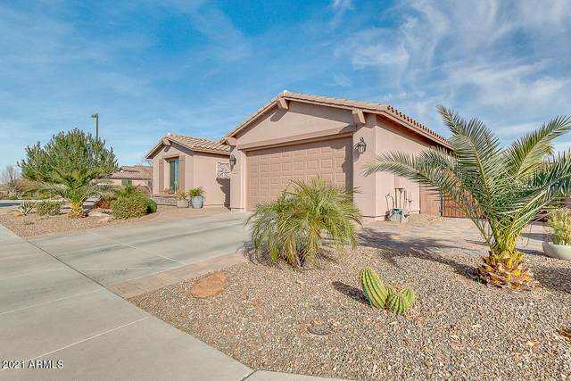 40991 N Olive Street, San Tan Valley, AZ 85140 (MLS #6180985) :: The Helping Hands Team