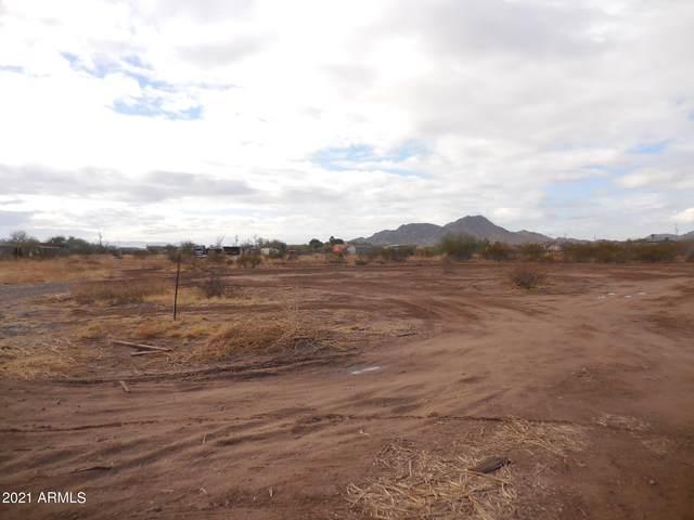 13304 S 207th Avenue, Buckeye, AZ 85326 (MLS #6180994) :: neXGen Real Estate