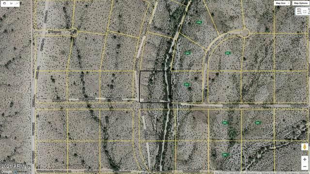 4701 N 313TH Avenue, Buckeye, AZ 85396 (MLS #6181035) :: The W Group