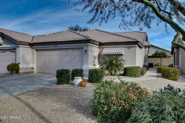 20615 N 103RD Drive, Peoria, AZ 85382 (MLS #6181037) :: Conway Real Estate