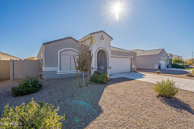 32945 N Ash Tree Lane, Queen Creek, AZ 85142 (MLS #6181042) :: The Property Partners at eXp Realty