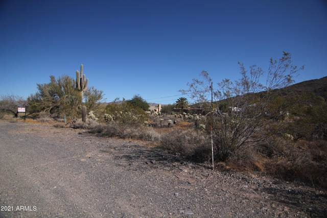 37027 N Cave Creek Road, Cave Creek, AZ 85331 (MLS #6181055) :: The Newman Team