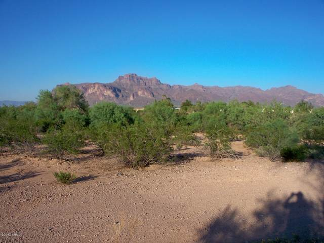 2100 E Old West Highway, Apache Junction, AZ 85119 (MLS #6181077) :: Devor Real Estate Associates