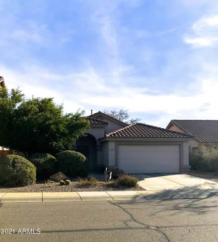 4031 E Rowel Road, Phoenix, AZ 85050 (MLS #6181084) :: The Newman Team
