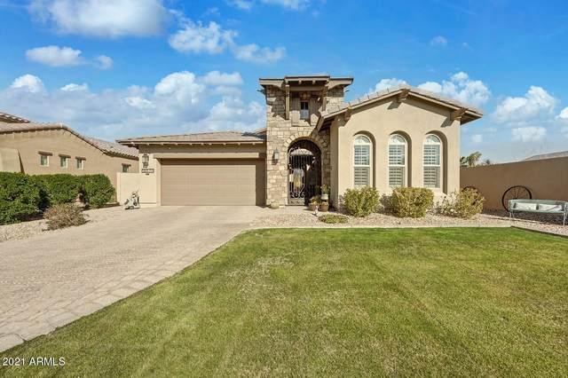 18570 E Mockingbird Court, Queen Creek, AZ 85142 (MLS #6181092) :: My Home Group