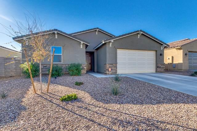 4063 W Dayflower Drive, Queen Creek, AZ 85142 (MLS #6181246) :: Klaus Team Real Estate Solutions