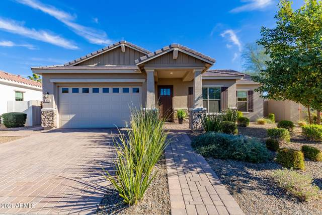 851 S Scallop Drive, Gilbert, AZ 85233 (MLS #6181252) :: ASAP Realty