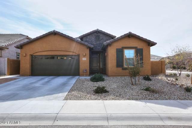 7695 W Fetlock Trail, Peoria, AZ 85383 (MLS #6181261) :: Yost Realty Group at RE/MAX Casa Grande