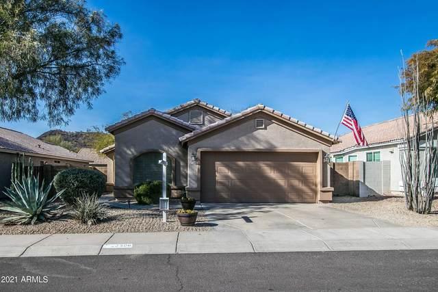 23606 N 22ND Way, Phoenix, AZ 85024 (MLS #6181305) :: Conway Real Estate
