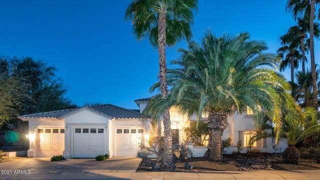 3051 E Rock Wren Road, Phoenix, AZ 85048 (MLS #6181319) :: Balboa Realty