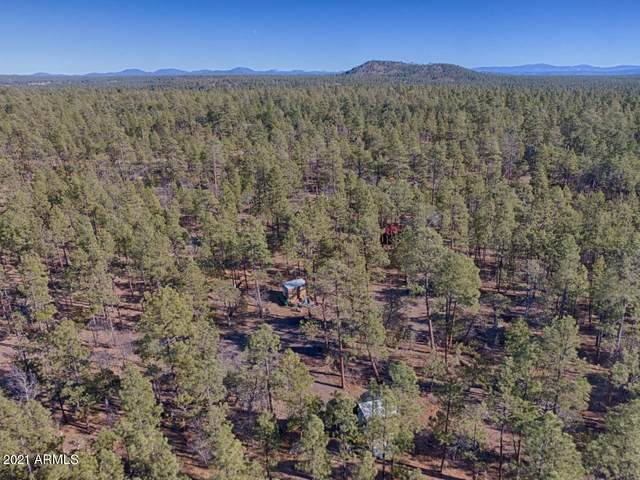 TBD N Woodland Road, Lakeside, AZ 85929 (MLS #6181372) :: Maison DeBlanc Real Estate
