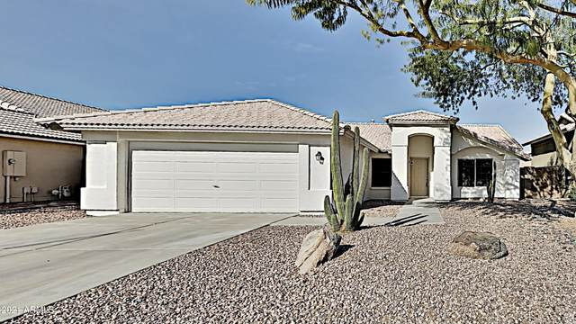 10870 W Melinda Lane, Sun City, AZ 85373 (MLS #6181392) :: Conway Real Estate