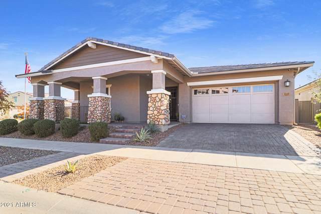 10149 E Cintron Drive, Mesa, AZ 85212 (MLS #6181403) :: Yost Realty Group at RE/MAX Casa Grande