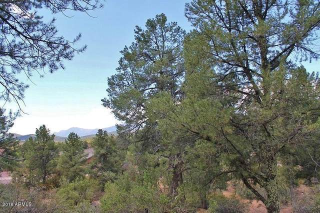 801 N Thunder Ridge Circle, Payson, AZ 85541 (MLS #6181405) :: Executive Realty Advisors