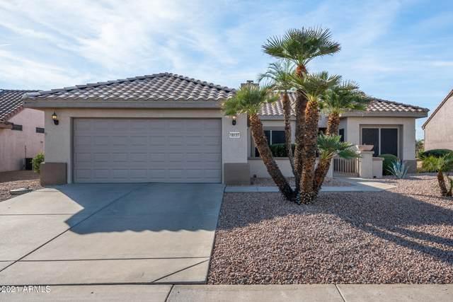 16137 W Sandia Park Drive, Surprise, AZ 85374 (MLS #6181413) :: Sheli Stoddart Team | M.A.Z. Realty Professionals