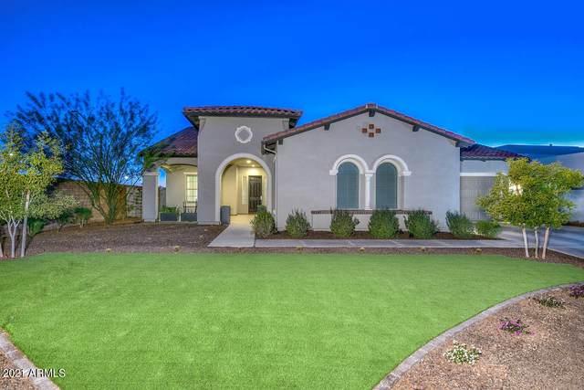 11705 W Red Hawk Drive, Peoria, AZ 85383 (MLS #6181414) :: Arizona Home Group