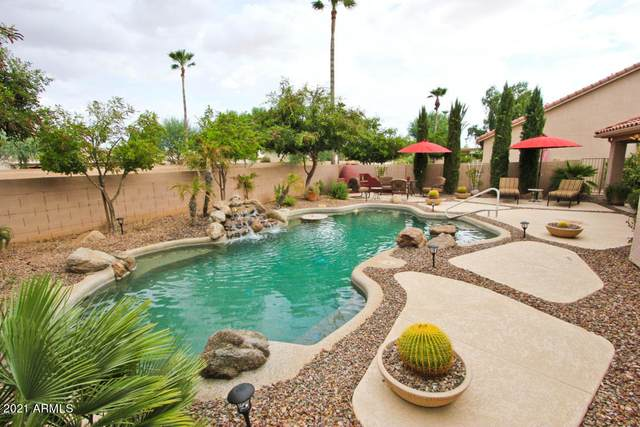 24705 S Rocky Brook Drive, Sun Lakes, AZ 85248 (MLS #6181438) :: The Property Partners at eXp Realty