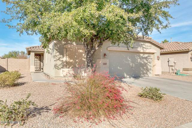 42430 W Oakland Drive, Maricopa, AZ 85138 (MLS #6181467) :: Yost Realty Group at RE/MAX Casa Grande