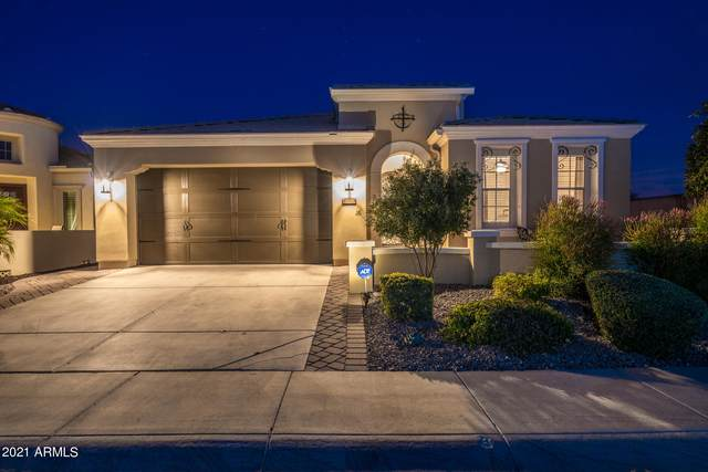 37163 N Wild Barley Path, Queen Creek, AZ 85140 (MLS #6181507) :: Yost Realty Group at RE/MAX Casa Grande