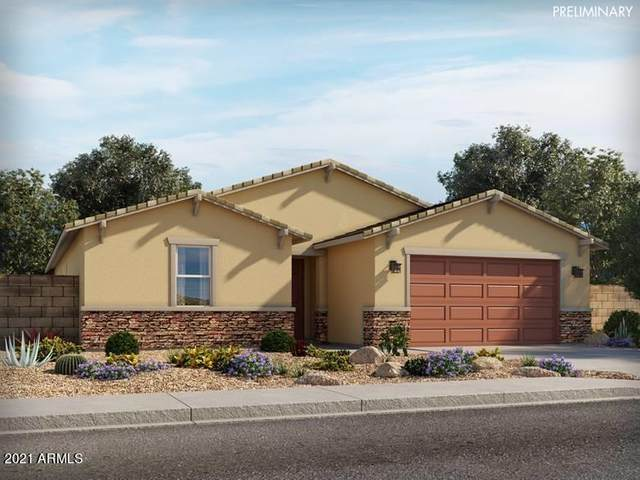 4543 W Bush Bean Way, San Tan Valley, AZ 85142 (MLS #6181528) :: Yost Realty Group at RE/MAX Casa Grande