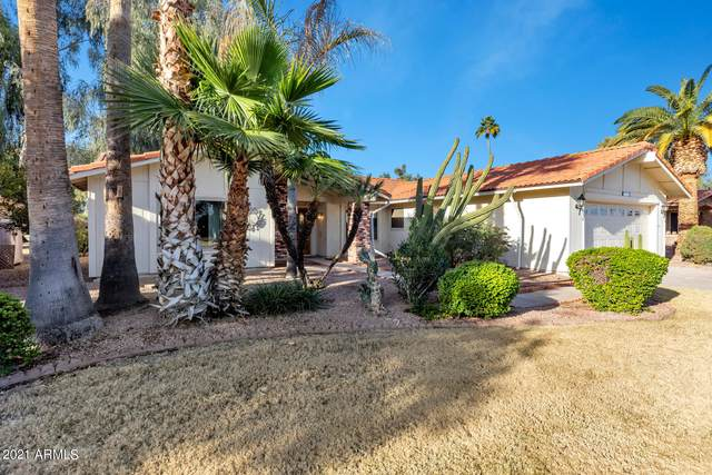1231 Leisure World, Mesa, AZ 85206 (MLS #6181532) :: ASAP Realty