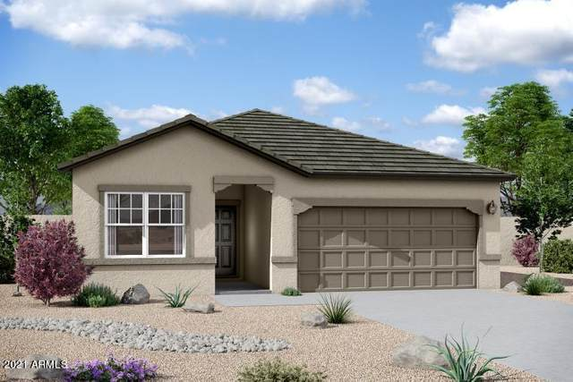 5845 N 195TH Drive, Litchfield Park, AZ 85340 (MLS #6181568) :: Scott Gaertner Group