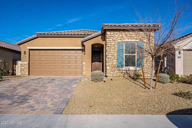9984 W Robin Lane, Peoria, AZ 85383 (MLS #6181572) :: Homehelper Consultants