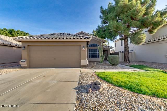 7356 W Crest Lane, Glendale, AZ 85310 (MLS #6181582) :: Executive Realty Advisors