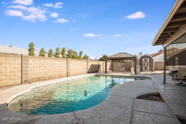 7420 W Windrose Drive, Peoria, AZ 85381 (MLS #6181589) :: Executive Realty Advisors