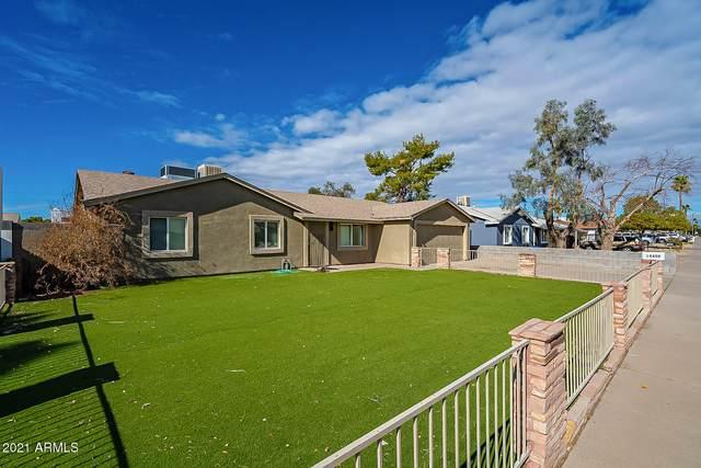 14408 N 36TH Place, Phoenix, AZ 85032 (MLS #6181616) :: Yost Realty Group at RE/MAX Casa Grande