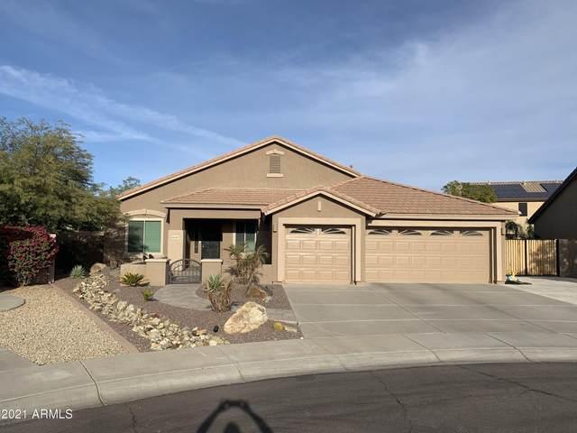 26367 N 73RD Avenue, Peoria, AZ 85383 (MLS #6181677) :: Executive Realty Advisors