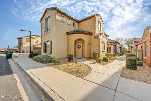 3973 E Melinda Drive, Phoenix, AZ 85050 (MLS #6181707) :: The Newman Team