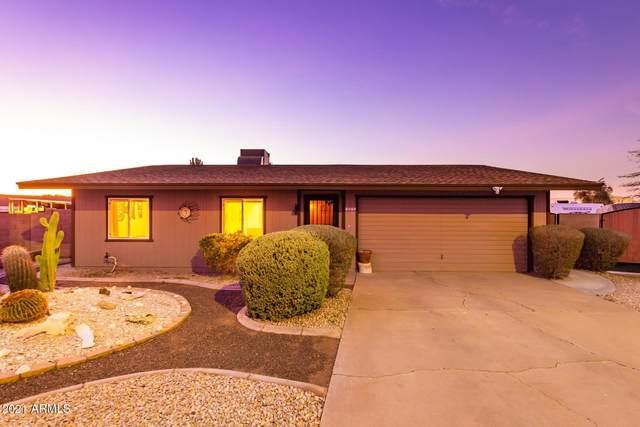 1852 N Wilbur Circle, Mesa, AZ 85201 (MLS #6181743) :: Nate Martinez Team