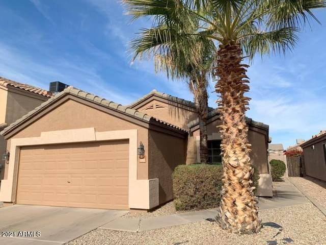 10850 E Carol Avenue, Mesa, AZ 85208 (MLS #6181757) :: Balboa Realty