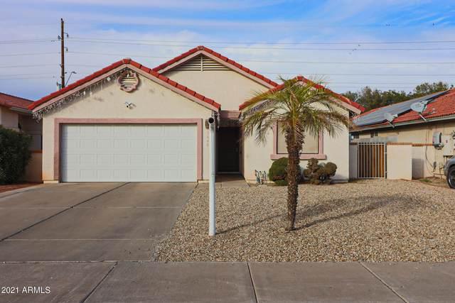 3640 W Villa Theresa Drive, Glendale, AZ 85308 (MLS #6181771) :: The AZ Performance PLUS+ Team