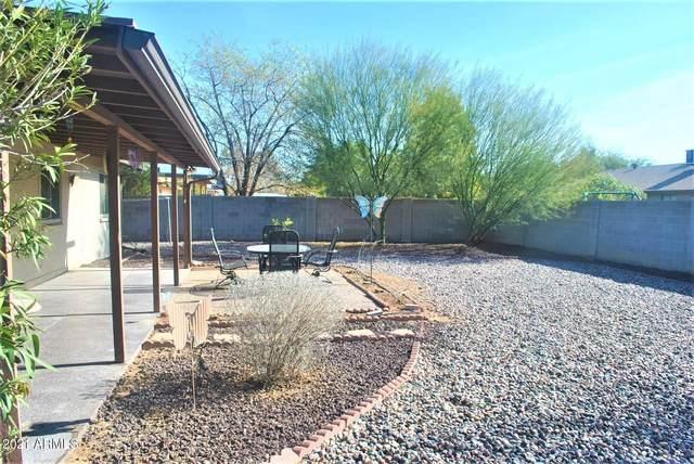 1023 E Hampton Avenue, Mesa, AZ 85204 (MLS #6181777) :: Nate Martinez Team