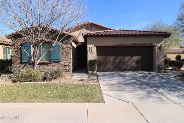 3665 S Jasmine Drive, Chandler, AZ 85286 (MLS #6181824) :: The Property Partners at eXp Realty