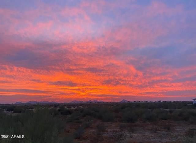 17850 N 68TH Street #2061, Phoenix, AZ 85054 (MLS #6181878) :: Conway Real Estate