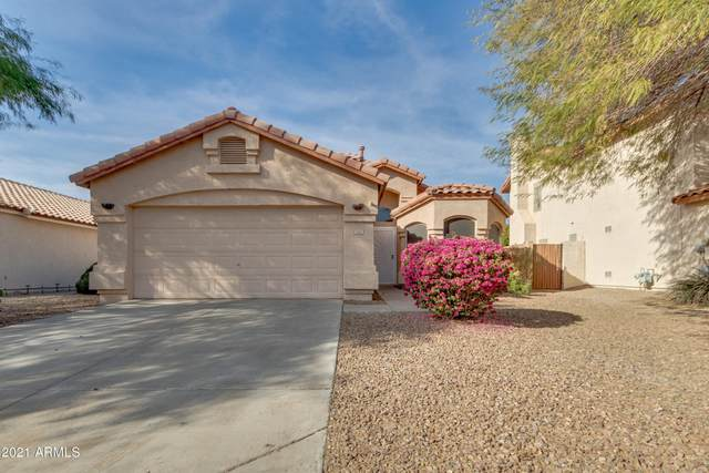 2612 N 126TH Drive, Avondale, AZ 85392 (MLS #6181912) :: Scott Gaertner Group